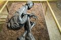 Bữa ăn cuối cùng của xác ướp đầm lầy nổi tiếng thế giới