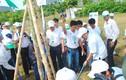 Vinamilk tài trợ trồng hơn 20.000 cây xanh tại Huế