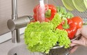 Cách rửa rau sạch, loại bỏ ký sinh trùng