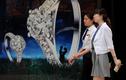 Đại gia mới nổi Trung Quốc vung tiền thế nào?