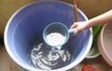 7 tháng không có nước sinh hoạt: Không vi phạm vẫn bị cắt nước