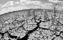 Mùa đông 2014 ấm, nhưng sẽ sớm có rét đậm, rét hại