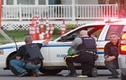 Tấn công bằng búa tại Canada, ít nhất 10 người thương vong