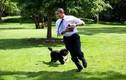Những khoảnh khắc rất đời thường của Tổng thống Obama