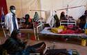 Cuộc sống khốn khổ của người dân Somalia vì hạn hán