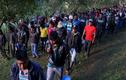 Cuộc sống của các chiến binh FARC giờ ra sao?