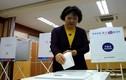 Người dân Hàn Quốc bỏ phiếu bầu tổng thống mới
