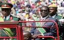 Thực hư vụ đảo chính lật đổ Tổng thống Zimbabwe