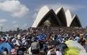 Dân Sydney vất vả tranh chỗ chờ xem pháo hoa đón năm mới