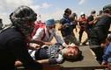Nga sẵn sàng đứng ra làm trung gian hòa giải cho Palestine-Israel