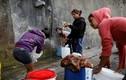 Dân Venezuela khốn khổ vì khủng hoảng nước