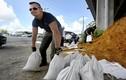 Bờ Đông nước Mỹ chuẩn bị đón siêu bão mạnh nhất trong 64 năm