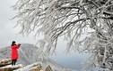 """Hình ảnh Trung Quốc """"đóng băng"""" trong mùa đông lạnh giá"""