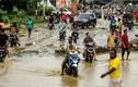 Hãi hùng lũ quét ở Indonesia, hơn 100 người thiệt mạng mất tích