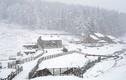 Kinh ngạc tuyết phủ trắng nước Anh vào mùa xuân