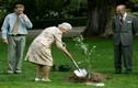 Ngỡ ngàng loạt khoảnh khắc đời thường giản dị của Nữ hoàng Anh