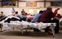 Tận mục nơi ở của người nhập cư trái phép tại Mỹ