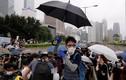 Biểu tình chống luật dẫn độ: Đặc khu trưởng Hong Kong bị dọa giết