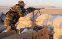 Phản công đại bại, khủng bố HTS phơi xác trên chiến trường Hama