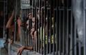Bạo loạn ở nhà tù Philippines, 36 người thương vong