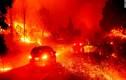 """Cháy rừng như """"ngày tận thế"""", dân California cuống cuồng sơ tán"""