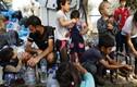 """Hãi hùng trại tị nạn """"bên bờ vực thảm họa"""" của di dân ở Hy Lạp"""