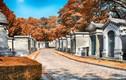 Kinh ngạc những nghĩa trang đặc biệt nhất thế giới