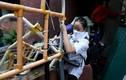 Người biểu tình cố thủ trong đại học Hong Kong, thề không đầu hàng cảnh sát