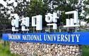 """164 du học sinh Việt Nam bất ngờ """"biến mất"""" ở Hàn Quốc"""