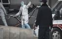 Châu Á chạy đua kiểm soát virus lạ chết người từ Trung Quốc
