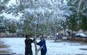 Kinh ngạc trận tuyết rơi cực hiếm phủ trắng thủ đô Iraq