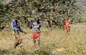 Đại dịch châu chấu đe dọa an ninh lương thực vùng Sừng Châu Phi