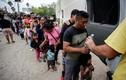 Hiểm nguy rình rập tại trại tị nạn ở biên giới Mỹ-Mexico mùa Covid-19