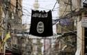 """Phiến quân IS vượt ngục bất thành, bị """"tóm sống"""" ở Hasakah"""