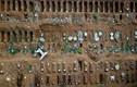 Hãi hùng nghĩa trang lớn nhất Brazil chôn cất nạn nhân COVID-19