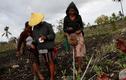Cuộc sống cư dân đảo ở Indonesia điêu đứng vì hạn hán