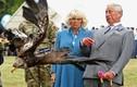 Loạt khoảnh khắc hài hước của các thành viên gia đình Hoàng gia Anh