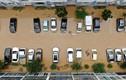 Cảnh ngập lụt kinh hoàng ở Hàn Quốc, phố biến thành sông