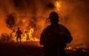 Ảnh: Cháy rừng ở California, Tổng thống Trump tuyên bố tình trạng thảm họa