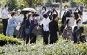 Phiên xét xử kẻ sát hại, phân xác 9 người rúng động nước Nhật