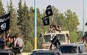 Khủng bố IS tấn công dữ dội Quân đội Syria tại chiến trường Hama