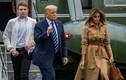 Gia đình ông Trump rục rịch chuẩn bị cho cuộc sống sau khi rời Nhà Trắng