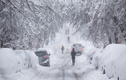 Toàn cảnh nước Mỹ chìm trong băng giá vì bão tuyết kỷ lục