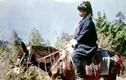 Ảnh hiếm về nhà lãnh đạo Myanmar Aung San Suu Kyi