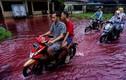 """Cận cảnh dòng nước lũ """"đỏ như máu"""" tràn vào ngôi làng ở Indonesia"""
