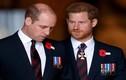 Trước khi rạn nứt, Hoàng tử William - Harry từng thân thiết thế nào?