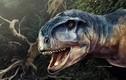 Video: Người phụ nữ quả quyết khủng long chạy qua vườn nhà lúc nửa đêm