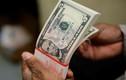 Tỷ giá ngoại tệ ngày 24/4: Đón tin xấu, USD giảm giá