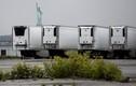 750 thi thể chất trong xe tải ở New York suốt một năm