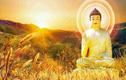 Nếu bạn phiền muộn hãy đọc 5 lời dạy bổ ích của Phật
